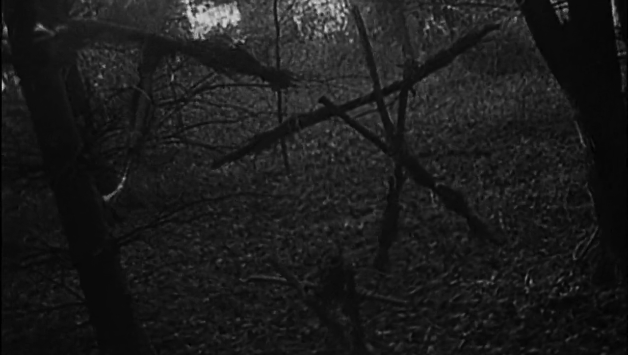 Blair Witch Project, reż. Eduardo Sánchez, Daniel Myrick